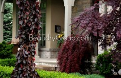entry-ways-landscape-burlington-beaudry